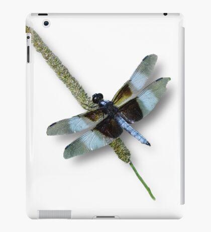 Der Drache hat gelandet iPad-Hülle & Klebefolie