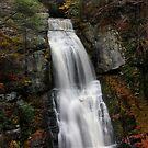 Bushkill Falls by KerrieLynnPhoto