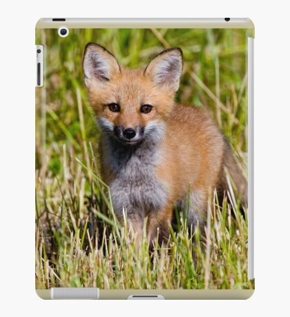 Fox Kit 2 iPad Case/Skin