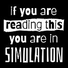 if you are reading this you are in simulation by kislev