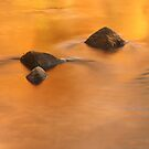 Autumn River Fire by David Piszczek