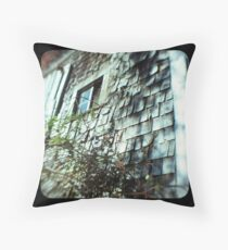 TTV- the old barn revisited Throw Pillow