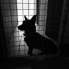 Death row by KanaShow