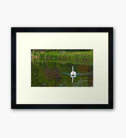 Newstead Abbey Grounds and Pond Framed Print