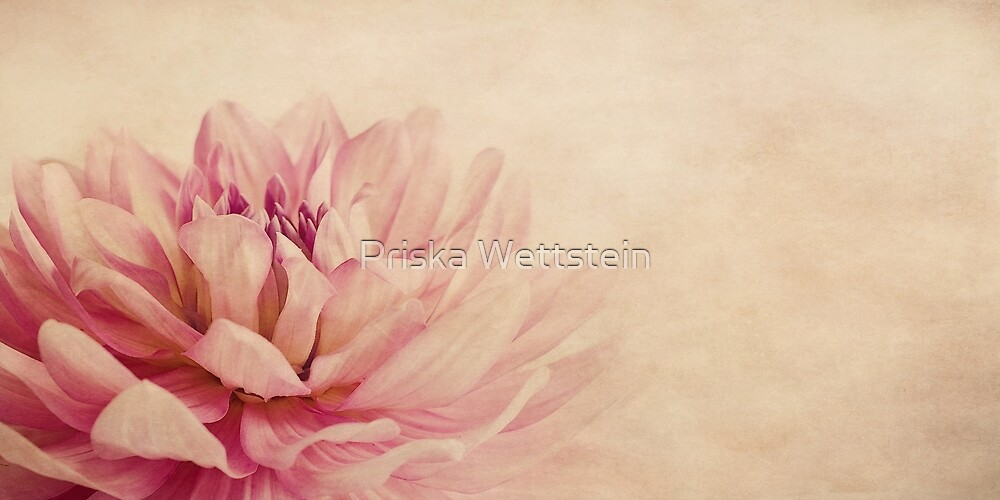 Floating by Priska Wettstein