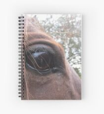 From A Horse's Point Of View Spiral Notebook