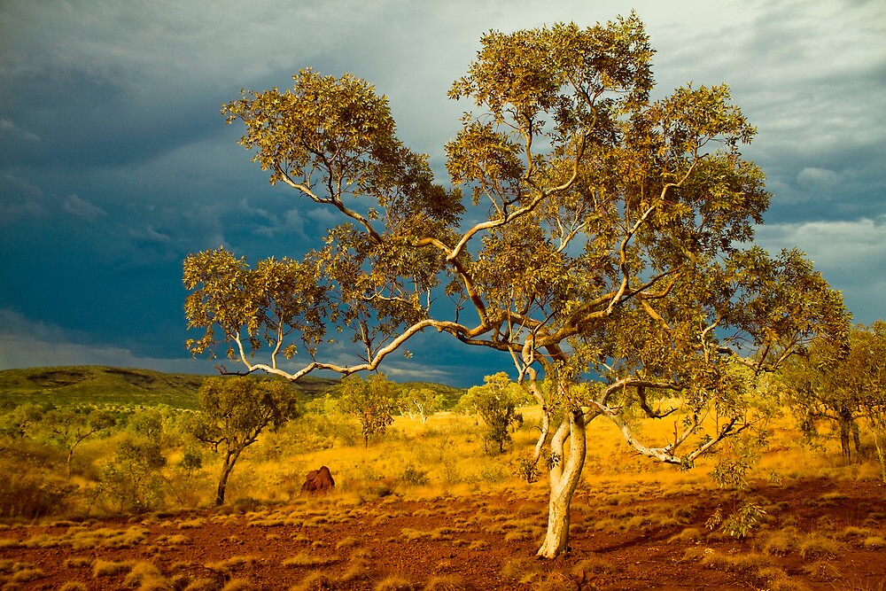 Approaching Thunderstorm at Karijini National Park, WA by andychiz