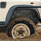 Stuck! by Anthony Goldman