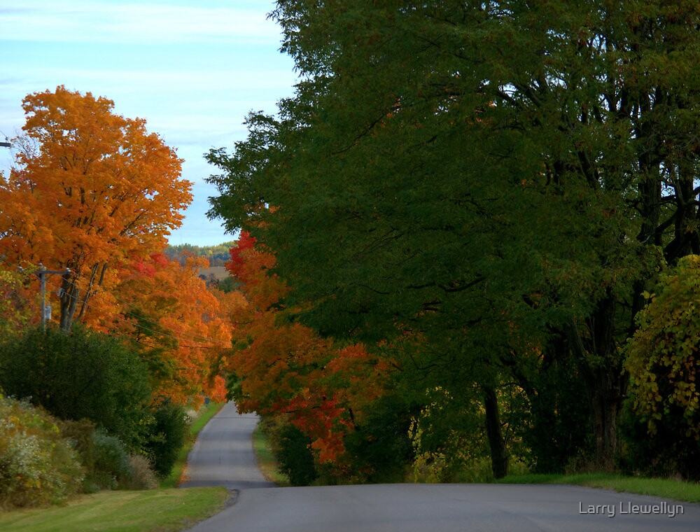 A Road to be Driven... by Larry Llewellyn