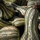 The Harvest by Eric Scott Birdwhistell