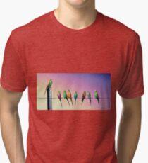 Birds of a Feather Tri-blend T-Shirt