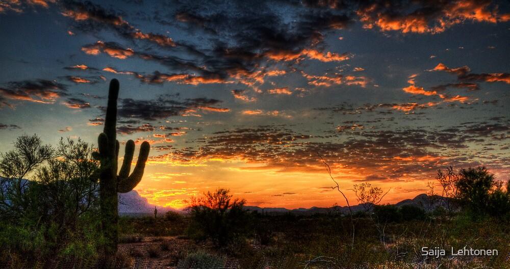 Sunrise Sweet Sunrise  by Saija  Lehtonen