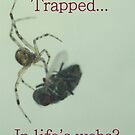 Trapped? by RockyWalley