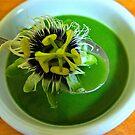 Ceylon soup by D. D.AMO
