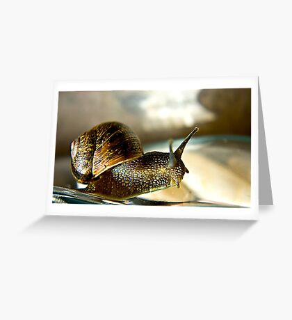 Snail #2 Greeting Card