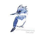 Kingfisher by christinahewson
