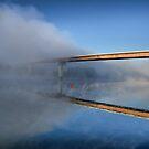 The Fog by Edward Myers