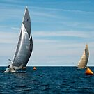 8 Metre Action by wolftinz