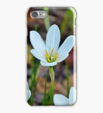 Autumn Zephyr Lily iPhone Case/Skin
