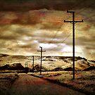 Blind River Loop Road. by Lynne Haselden