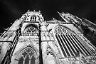 York Minster of an Evening by Andy Freer