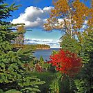 """""""Fall Inspiration Point"""" by MarieR"""