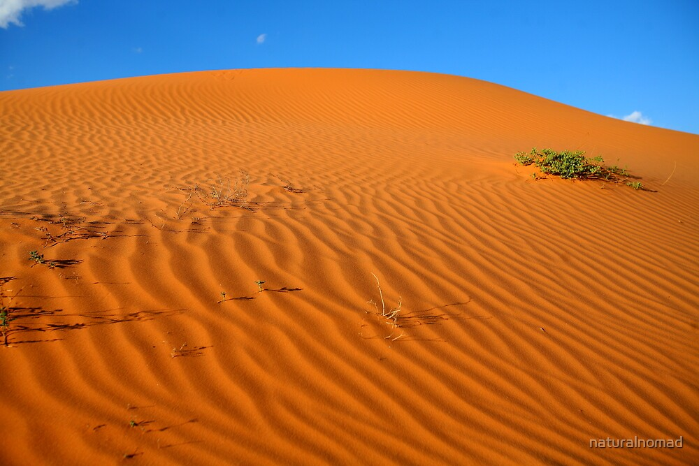 Ancient Dune by naturalnomad