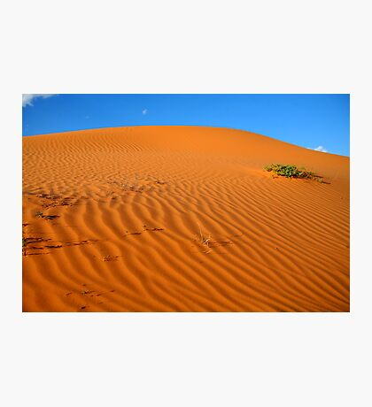 Ancient Dune Photographic Print