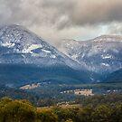Mountain River Snow, Tasmania by Chris Cobern