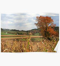 Autumn Fields in Pennsylvania Poster