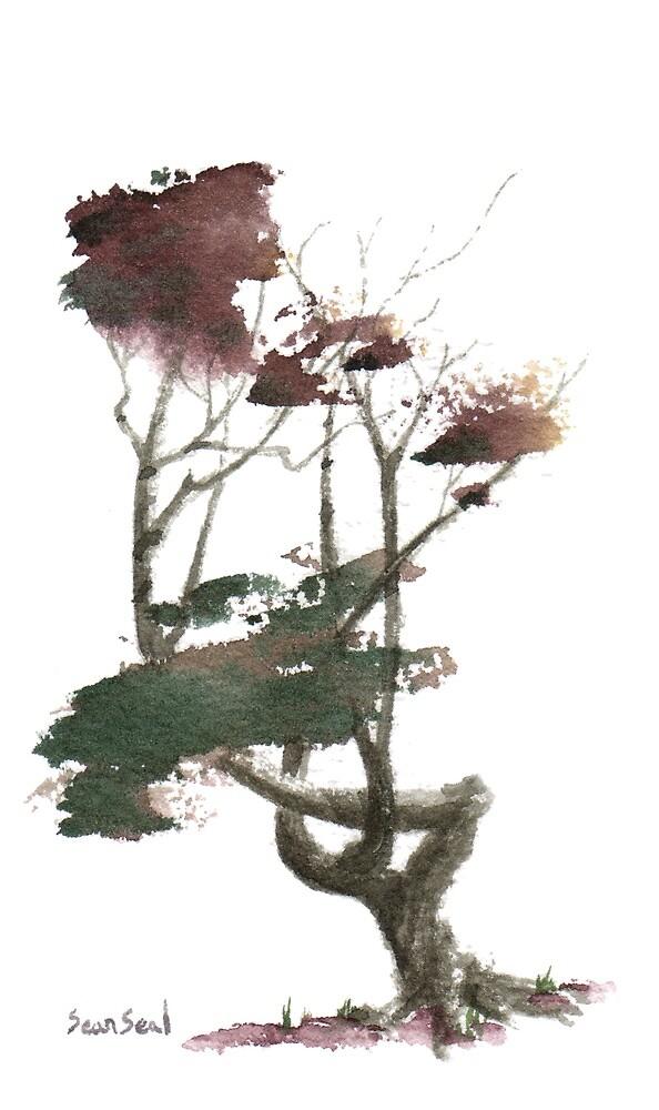 Little Tree 21 by Sean Seal
