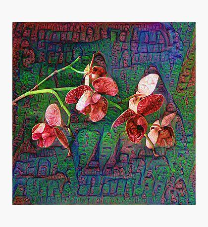 Phalaenopsis A #DeepDream Photographic Print