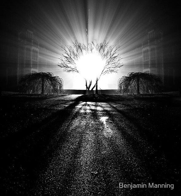 Shining Patriotism by Benjamin Manning