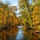 River in the Autumn by Teresa Young