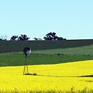 Canola & Country 2010 - 62 by Sharon Robertson