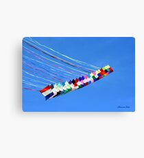 Dip and Dive, Wild and Free Canvas Print