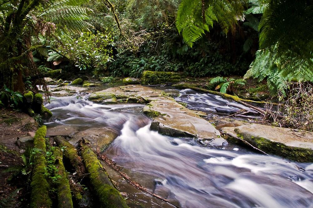 Down stream of Erskine Falls by Jason Ruth