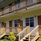 Belize Luxury Resorts by Black Orchid Resort
