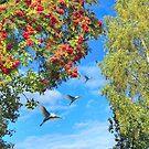 Autumn inspiration  by kindangel