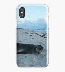 Seal - City Perth, Perth, 10th August, 2015 iPhone Case/Skin