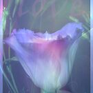 Violet Flame - Collaborated heART for Lianne by liesbeth
