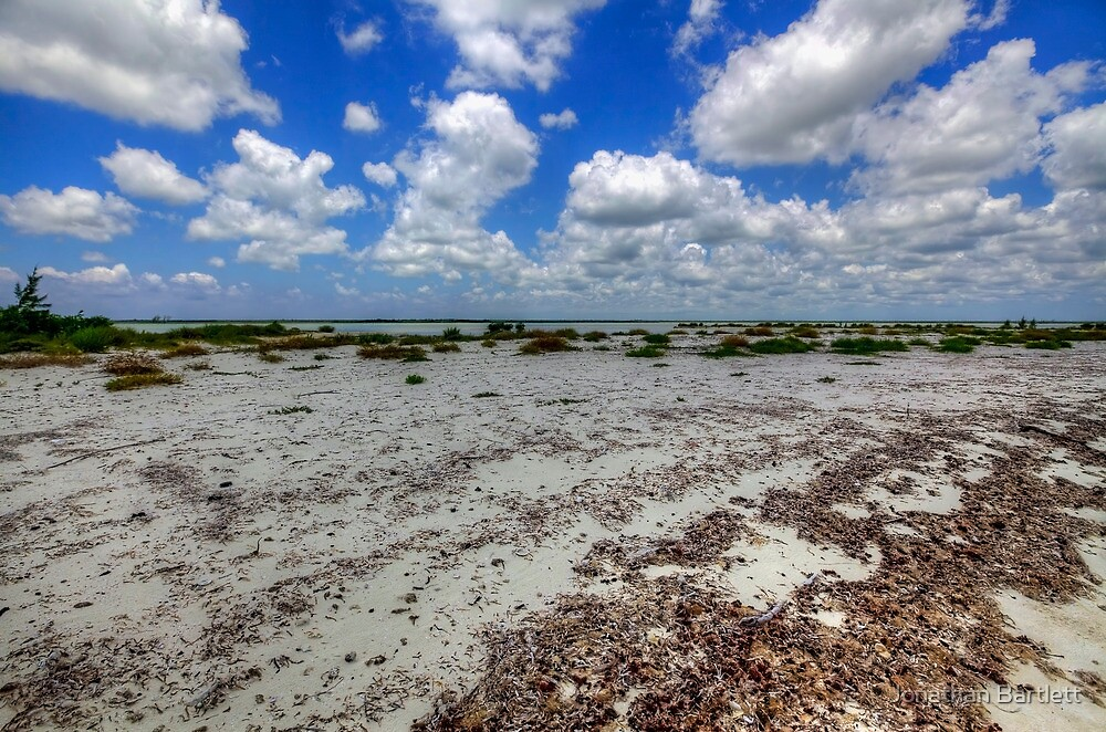 Cozumel, Mexico - Lonely Beach by Jonathan Bartlett