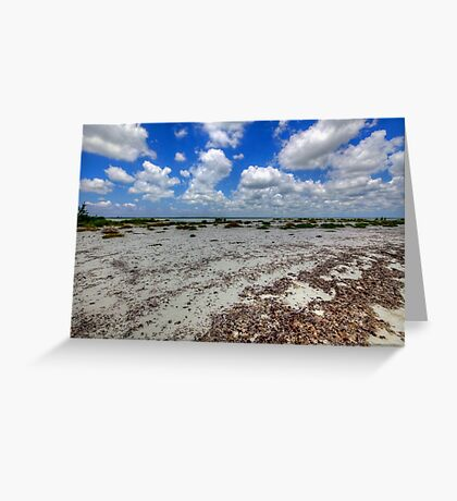 Cozumel, Mexico - Lonely Beach Greeting Card
