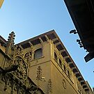 Barcelona - Outside Gothic Cathedral by Joy Williams