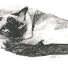Chelsea's Portrait by artymelanie