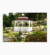 Tranquil Garden Photographic Print