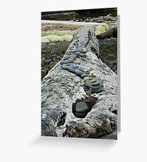 Log memorial Greeting Card