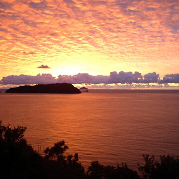 Red Sky at Morning, New Zealand Sunrise over Pacific Ocean by zavi