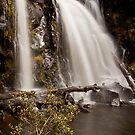 Visiting Hidden Creek Falls  by Kylie  Sheahen