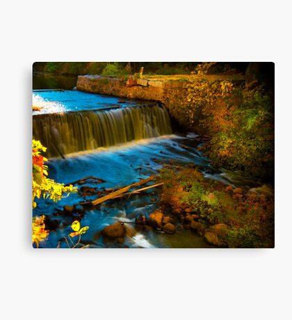 Walpole Town Forest III - Little water fall Canvas Print